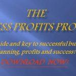 Business Profits Program