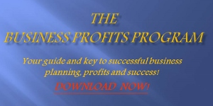 Business Profits Program